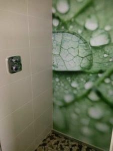 Duschrückwand als gestalterisches Element
